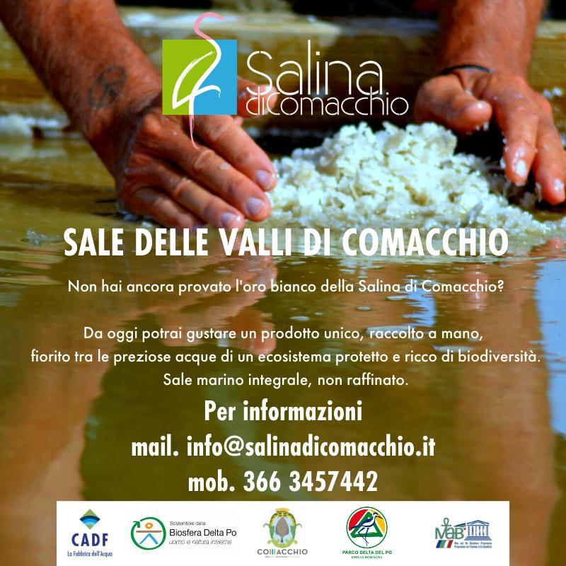 SALE DELLE VALLI DI COMACCHIO - VENDITA